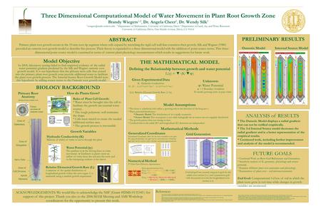 BIOLOGY BACKGROUND Three Dimensional Computational Model of Water Movement in Plant Root Growth Zone Brandy Wiegers 1,2, Dr. Angela Cheer 2, Dr. Wendy.