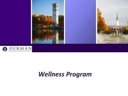 Wellness Program. History of the Wellness Initiative  An employee benefits committee project  Discussions initiated in spring 2013  Forums, meetings,