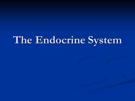 The Endocrine System. Ground Rules Respect what other people say; no put-downs Be sensitive to other people's feelings Not answering a question is all.