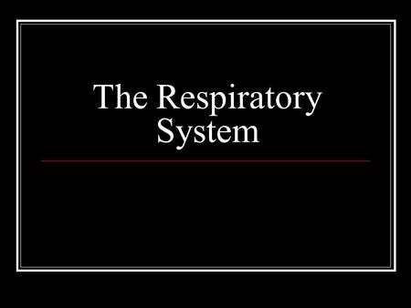 The Respiratory System. Primary Function of Respiratory System The respiratory system supplies the blood with oxygen so that the blood can deliver oxygen.