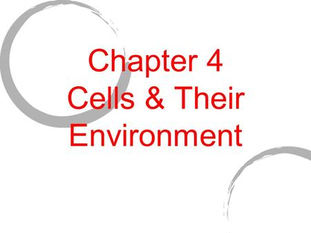 Chapter 4 Cells & Their Environment. DO NOW 1) Grab a Chapter 4 packet 2) Try to answer questions 1 & 2 on page one 3) Wait quietly to begin.