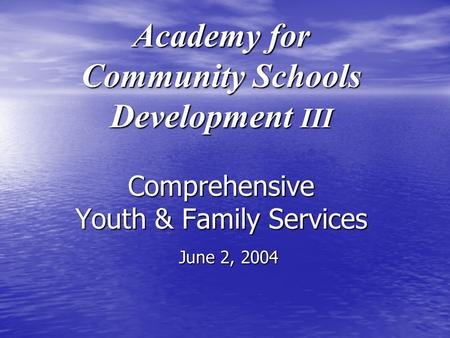 Academy for Community Schools Development III Comprehensive Youth & Family Services June 2, 2004.