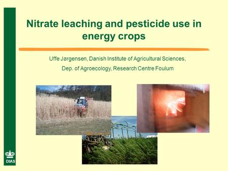 DIAS Nitrate leaching and pesticide use in energy crops Uffe Jørgensen, Danish Institute of Agricultural Sciences, Dep. of Agroecology, Research Centre.
