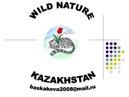 THE MAIN GOALS OF WILD NATURE NGO WILDLIFE CONSERVATION ECOLOGICAL EDUCATION ECOTOURISM.