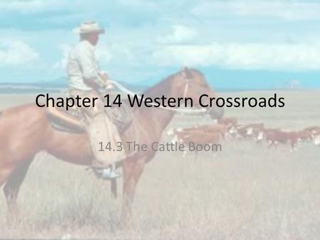 Chapter 14 Western Crossroads 14.3 The Cattle Boom.