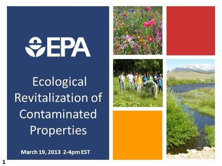Ecological Revitalization of Contaminated Properties March 19, 2013 2-4pm EST 1.