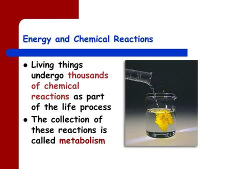 Energy and Chemical Reactions Living things undergo thousands of chemical reactions as part of the life process The collection of these reactions is called.