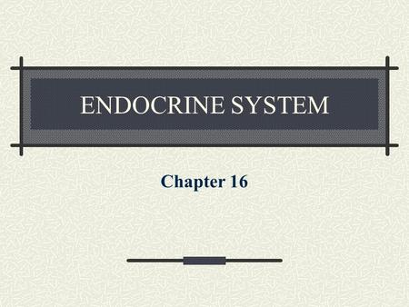 ENDOCRINE SYSTEM Chapter 16. ENDOCRINE GLANDS Ductless glands that produce hormones that are released directly into the bloodstream and are transported.