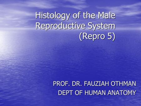 Histology of the Male Reproductive System (Repro 5) PROF. DR. FAUZIAH OTHMAN DEPT OF HUMAN ANATOMY.
