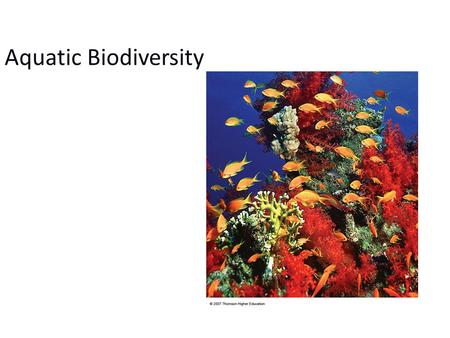 Aquatic Biodiversity. Chapter Overview Questions What are the basic types of aquatic life zones and what factors influence the kinds of life they contain?