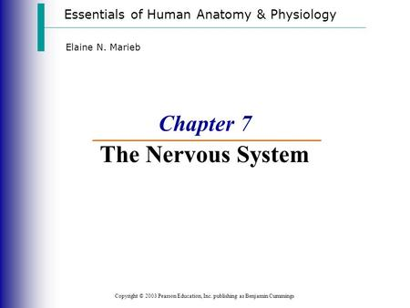 Essentials of Human Anatomy & Physiology Copyright © 2003 Pearson Education, Inc. publishing as Benjamin Cummings Elaine N. Marieb Chapter 7 The Nervous.