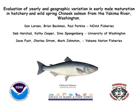 Evaluation of yearly and geographic variation in early male maturation in hatchery and wild spring Chinook salmon from the Yakima River, Washington. Don.