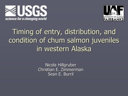 Timing of entry, distribution, and condition of chum salmon juveniles in western Alaska Nicola Hillgruber Christian E. Zimmerman Sean E. Burril.