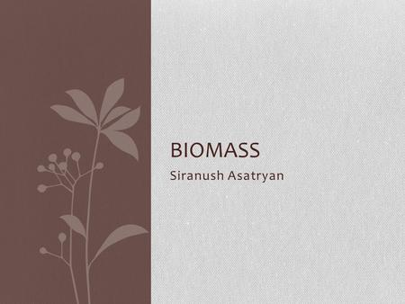 Siranush Asatryan BIOMASS. What is biomass? Biomass is all plant and animal matter on the Earth's surface. Biomass is anything that is alive. It is also.