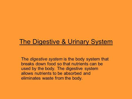 The Digestive & Urinary System The digestive system is the body system that breaks down food so that nutrients can be used by the body. The digestive system.