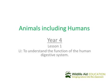 Animals including Humans Year 4 Lesson 1 LI: To understand the function of the human digestive system.