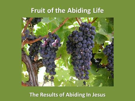 Fruit of the Abiding Life The Results of Abiding In Jesus.