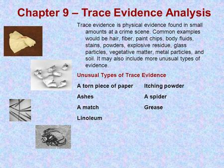 Trace evidence is physical evidence found in small amounts at a crime scene. Common examples would be hair, fiber, paint chips, body fluids, stains, powders,