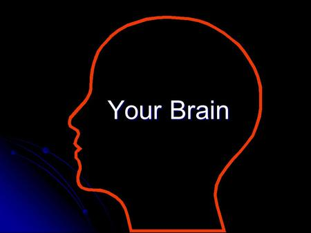 Your Brain. The Adult Human brain Neurons = brain cells that regulate all our thinking Neurons = brain cells that regulate all our thinking There are.