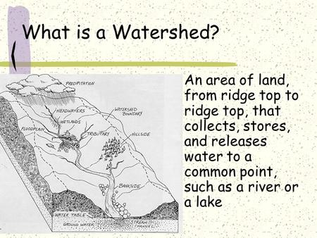 What is a Watershed? An area of land, from ridge top to ridge top, that collects, stores, and releases water to a common point, such as a river or a lake.