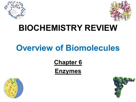 BIOCHEMISTRY REVIEW Overview of Biomolecules Chapter 6 Enzymes.