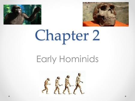 "Chapter 2 Early Hominids. 2.2: Australopithecus Afarensis: Lucy and Her Relatives Australopithecus o Earliest group of hominids o ""Southern Ape"" o Found."
