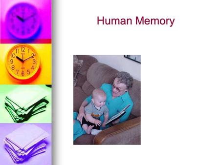 Human Memory. Three Memory Processes Memory = the storage and retrieval of what one has either learned or experienced Memory = the storage and retrieval.