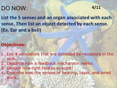 DO NOW : List the 5 senses and an organ associated with each sense. Then list an object detected by each sense. (Ex. Ear and a bell) Objectives: 1.List.