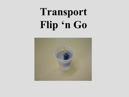 Transport Flip 'n Go.