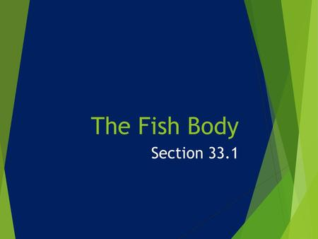 The Fish Body Section 33.1.