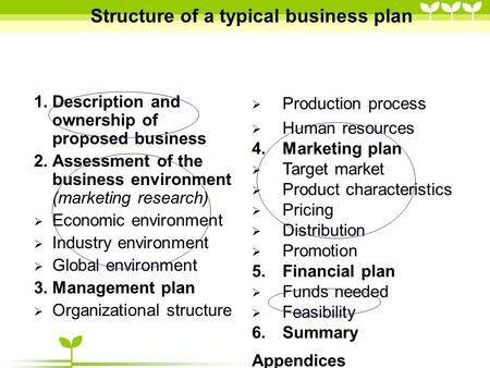 Structure of a typical business plan 1.Description and ownership of proposed business 2.Assessment of the business environment (marketing research)  Economic.