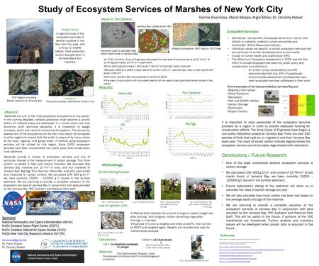Study of Ecosystem Services of Marshes of New York City Karina Alventosa, Marlo Moses, Argie Miller, Dr. Dorothy Peteet On-Site Coring Process: Methodology: