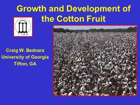 Growth and Development of the Cotton Fruit Craig W. Bednarz University of Georgia Tifton, GA.