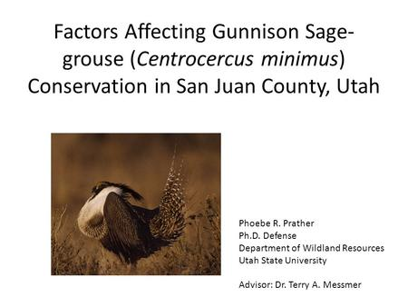 Factors Affecting Gunnison Sage- grouse (Centrocercus minimus) Conservation in San Juan County, Utah Phoebe R. Prather Ph.D. Defense Department of Wildland.