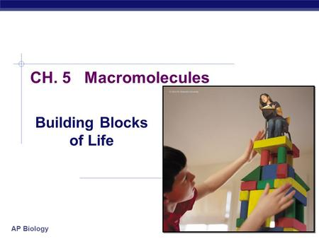 AP Biology 2007-2008 CH. 5 Macromolecules Building Blocks of Life.