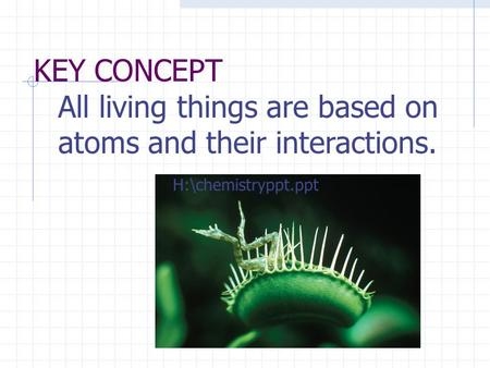 KEY CONCEPT All living things are based on atoms and their interactions. H:\chemistryppt.ppt.