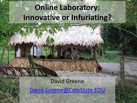 David Greene Online Laboratory: Innovative or Infuriating?