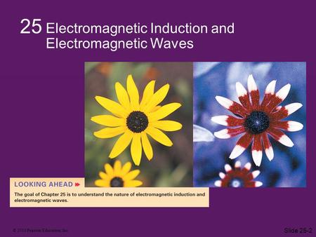 © 2010 Pearson Education, Inc. Slide 25-2 25 Electromagnetic Induction and Electromagnetic Waves.