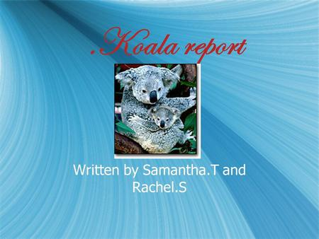 .Koala report Written by Samantha.T and Rachel.S.