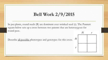 Bell Work 2/9/2015 In pea plants, round seeds (R) are dominant over wrinked seed (r). The Punnett square below sets up a cross between two parents that.