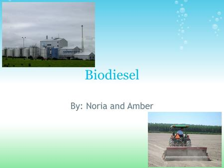 Biodiesel By: Noria and Amber. PROS *Biodiesel is made using oil from plants, such as rapessed (canola), soy beans, and sunflowers. The oil is extracted.