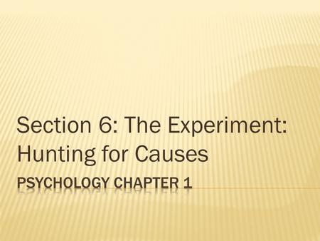 Section 6: The Experiment: Hunting for Causes