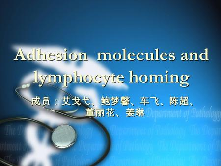 Adhesion molecules and lymphocyte homing