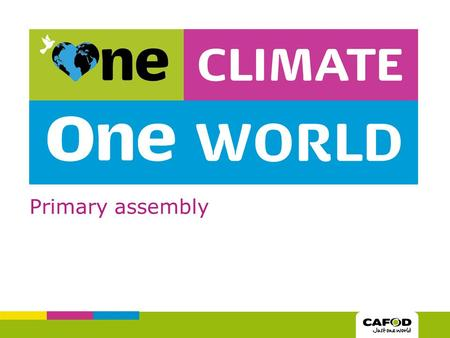 Primary assembly. What can we do to help tackle climate change?