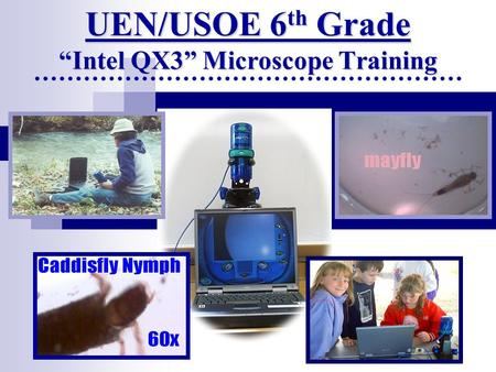"UEN/USOE 6 th Grade ""Intel QX3"" Microscope Training."