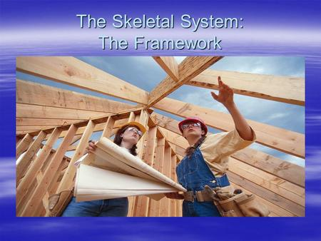 The Skeletal System: The Framework. 3 Main Purposes of the Skelton 3 main purposes To shape and support your body To protect the organs To work with the.