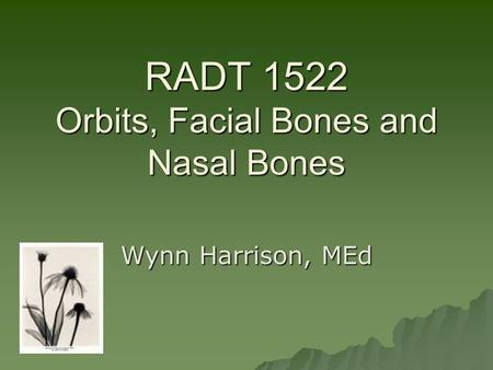 RADT 1522 Orbits, Facial Bones and Nasal Bones Wynn Harrison, MEd.