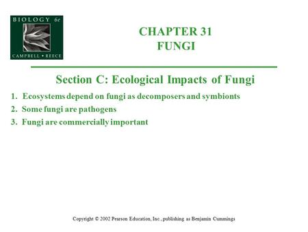 CHAPTER 31 FUNGI Copyright © 2002 Pearson Education, Inc., publishing as Benjamin Cummings Section C: Ecological Impacts of Fungi 1.Ecosystems depend on.