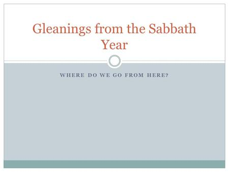 WHERE DO WE GO FROM HERE? Gleanings from the Sabbath Year.