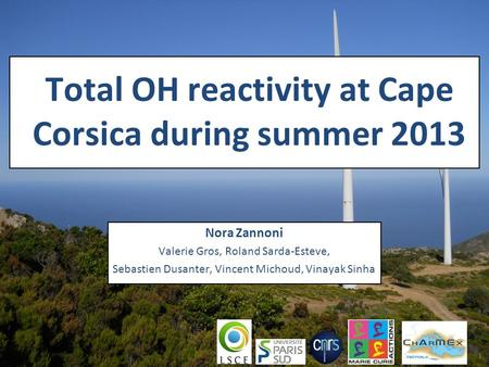 Total OH reactivity at Cape Corsica during summer 2013